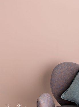 Vopsea de perete Annie Sloan Wall Paint®